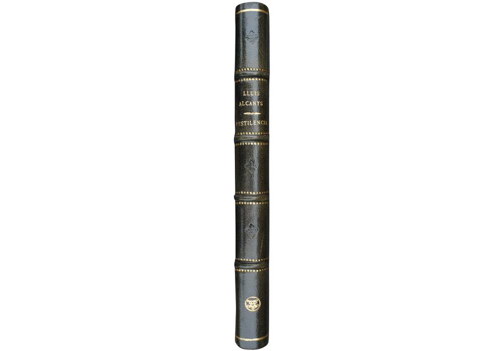 Incunable, Libro antiguo, Facsímil, Regiment pestilencia